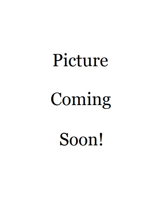 PictureComingSoon2